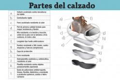 Calzado de uso profesional